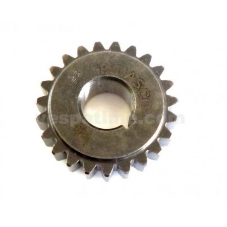 Gear pinion 23 teeth pinasco for primary 24-72 straight teeth