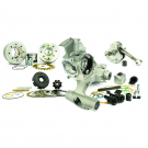 PINASCO 251cc SLAVE engine kit with reed valve