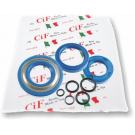 Kit oil seal vespa 50/90/125 et3/primavera, pk50s (3 oil seals + 5 o-rings) corteco blue