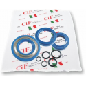 Kit oil seal for vespa pk50xl with oil seal flywheel side dimensions 20-32-7 (3-piece set + 5 o-rings) corteco blue