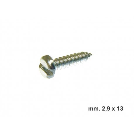 Ø3 self-tapping slot head screw for horn fastening. 2,9*13