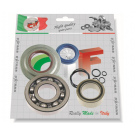 Kit bearings and oil seals for overhauling crankshaft