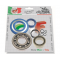 Kit bearings and oil seals for overhauling crankshaft for vespa 125 ts/gtr, 150 sprint veloce, px 125/150/200, t5, arcobaleno.