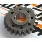 Gear pinion 23 teeth drt for primary 24-58 polini