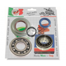 Kit bearings and oil seals for overhauling crankshaft for vespa 125 T5