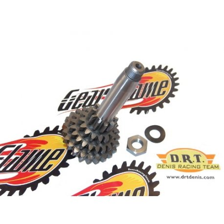 Gear cog 4th short drt, cluster 21 teeth modified universal - compact -